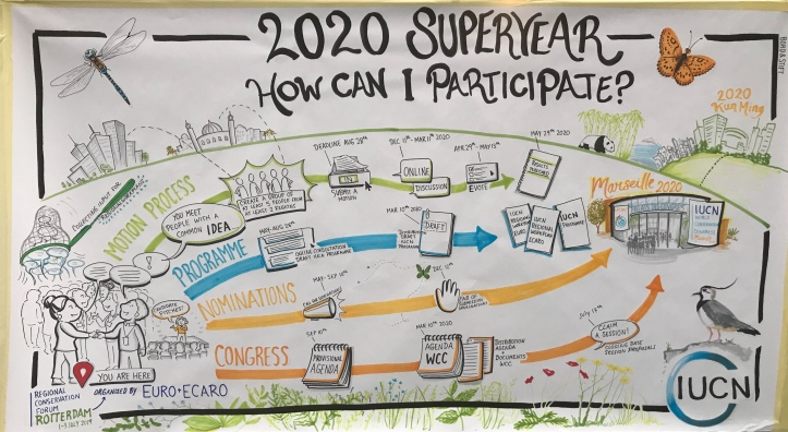 2020 superyear graphic